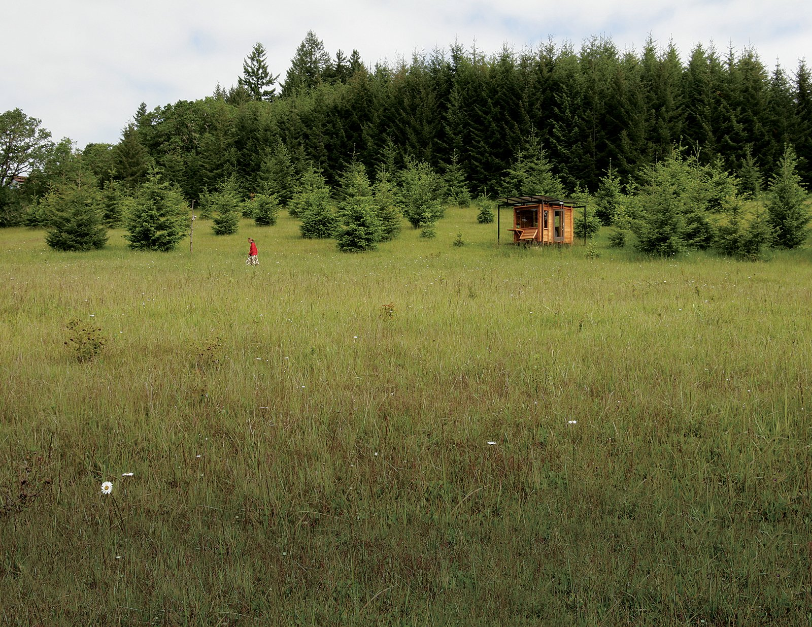 #outdoor #green #cabin #field #flower #meadow #tree #smallspace #tiny   Cabin by DAVE MORIN from Outdoor