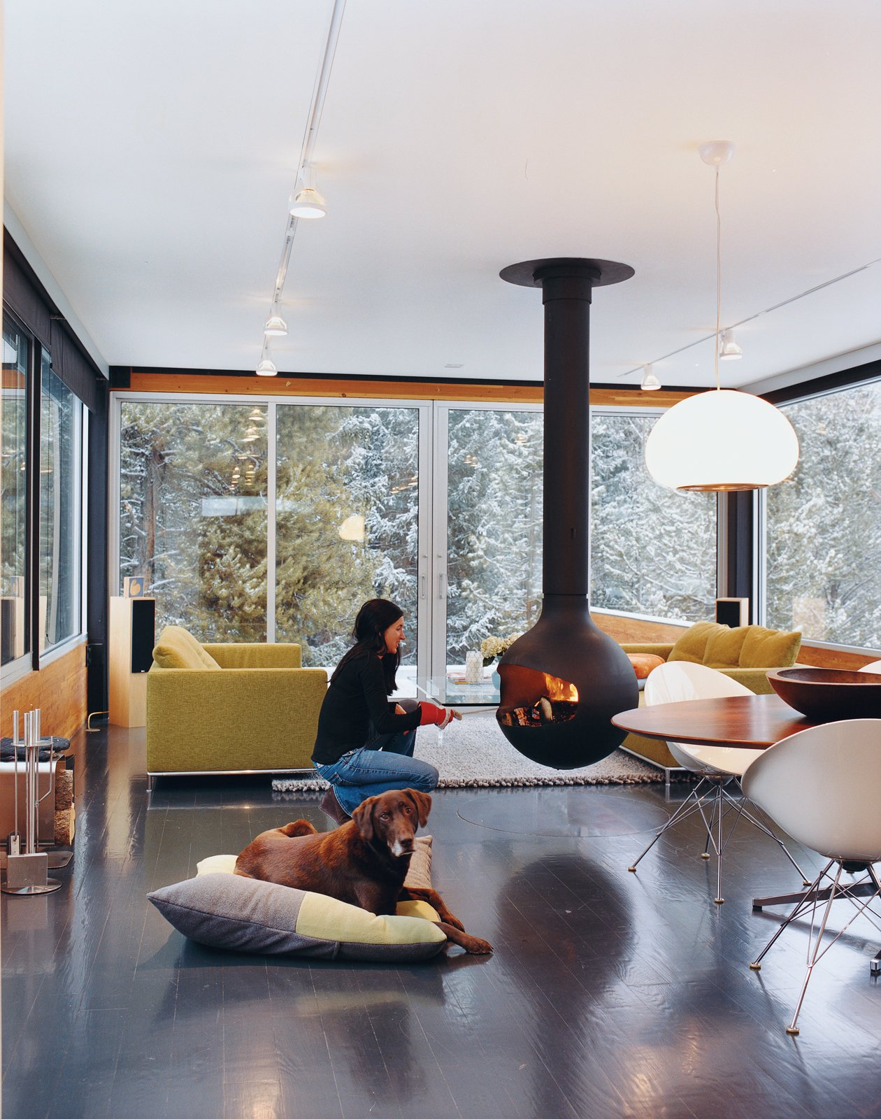 #fireplace #livingroom #central #landscape #form #structure #shape #dynamic #windows #lighting #dog #mountains #Bathyscafocus #FocusCreations   60+ Modern Lighting Solutions by Dwell from Dogs Who Love Modern Design