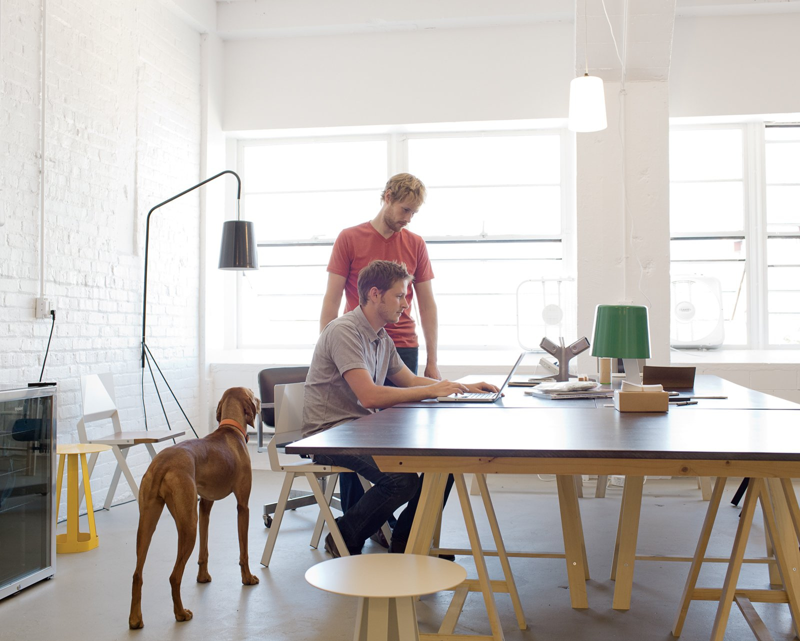 #workspace #office #interior #inside #window #seatingdesign #interiordesign #desk #lighting #flow #chairs #stools #dog #lamp #misewellstudio   Photo by Daniel Shea  Dogs Who Love Modern Design by Brian Karo from Furniture