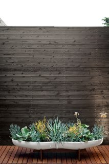 A Modern Bungalow in Venice Beach - Photo 8 of 10 - Michael and Tamami brought greenery to the master bath courtyard, which is lined with Eco Arbor Designs deck tiles, in the form of succulents in a ceramic Peanut planter by John Follis for Architectural Pottery from Vessel. Photo by Coral von Zumwalt.