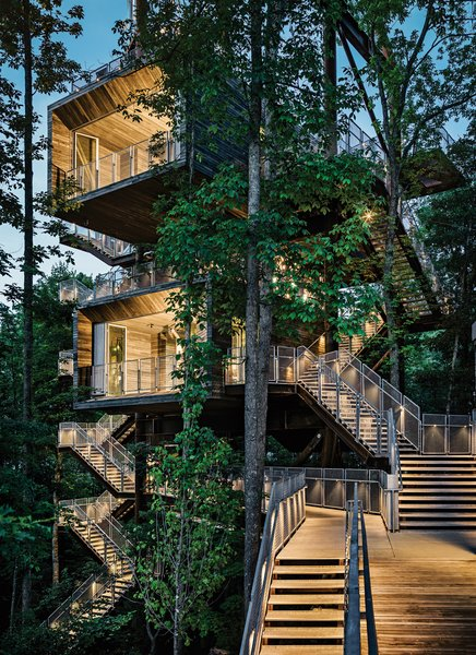 Visitors learn about energy and water conservation as they climb outdoor staircases that lead from the forest floor to the 125-foot-high rooftop rising above the leaf canopy. Photo by Joe Fletcher. Photo  of Sustainability Treehouse modern home