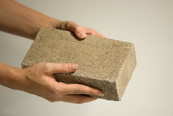 bioMASON developed a technology that uses bacteria to form a natural cement that binds aggregate into durable bricks.