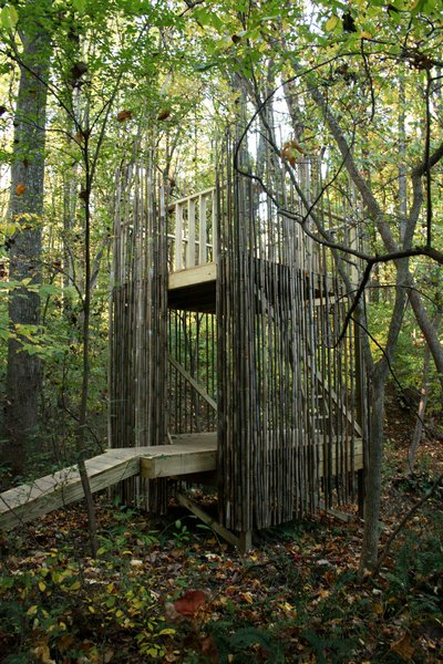 Comprised of two eight-foot-by-eight-foot platforms that create two floors, and screened in with bamboo shoots, a modern tree house outside Baltimore provides sanctuary for kids and adults alike. Photo courtesy Laurie Stubb.