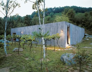 101 Best Modern Cabins - Photo 100 of 101 - Cho's recently completed vacation retreat, the Concrete Box House, was inspired by the use of raw materials. Cho decided on grape vines as an unusual landscape element.