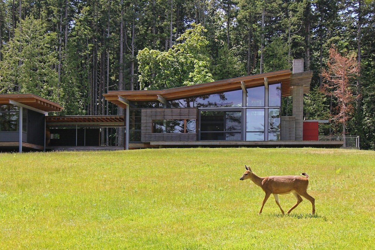 The 3,000-square-foot house sits partially on stilts to tread as lightly as possible on its natural island site. Tagged: Exterior, House, Glass Siding Material, and Wood Siding Material.  Photo 1 of 16 in An Off-the-Grid Island Home for a Seattle Music Producer