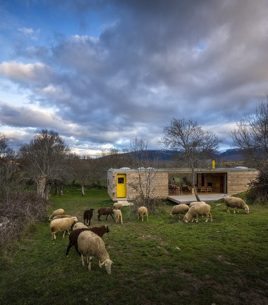 """""""This is a humanized landscape of meadows, walls, ash, streams, a small-scale landscape, minimal, almost domestic, and where absolutely everything happens in yellow,"""" the architects wrote in a statement. To that end, the only hint of color on the house's otherwise natural exterior is a door painted a vibrant lemon-yellow hue. Photo  of Refuge modern home"""