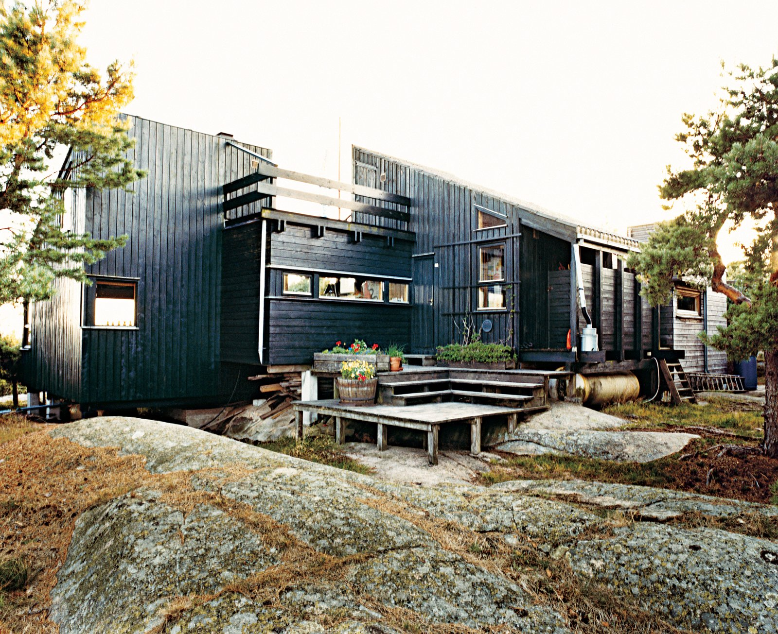Blocked from the wind, a deck at the rear of the house is a favorite place for sunbathing and also shelters planters of herbs. Tagged: Exterior, Cabin Building Type, Wood Siding Material, and Shed RoofLine.  Photo 8 of 9 in Norwegian Wood
