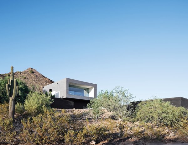 A lone saguaro marks the southwest corner of Thomas and Laura Hyland's property, which is situated adjacent to the Phoenix Mountain Preserve. The structure's main living volume is elevated and faced in glass, overlooking a descending pathway that leads to a pool tucked into the site.