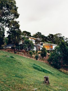 Hillside Family Home in Australia - Photo 1 of 12 - The Tinbeerwah house and studio keep a low profile among the site's eucalyptus trees.