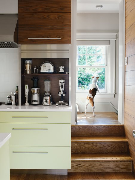 25 Dogs Living in the Modern World - Photo 19 of 25 - Dan Pacek and John Roynon of Leonia, New Jersey, expanded and renovated their tiny kitchen, integrating it more sensibly into their 1911 house while borrowing natural light from secondary sources, such as a window on the landing leading to the second floor.