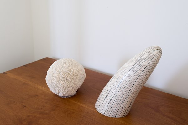 Small coral and ivory sculptures sit on a custom wooden chest.