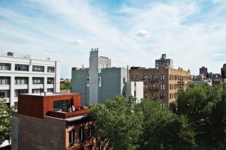 A Brooklyn Couple Rehabilitate a 19th-Century Duplex - Photo 2 of 14 -