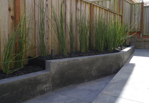 """It was nothing but a muddy pit,"" landscape architect Terence Lee says about the 500-square-foot yard behind his Pacifica, California, house. Instead of filling the space with potted plants or paving it over for a quick fix, Lee devised a simple budget-friendly plan involving tilted lines and a few plants to fashion a functional, low-maintenance space fit his family of five's lifestyle."