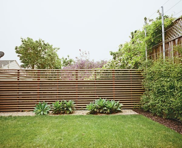 The once-sloping space now has climbing vines, a slatted fence, and foxtail agaves.