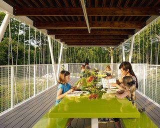 Austin's Casis Elementary School Teaching Garden - Photo 5 of 5 -