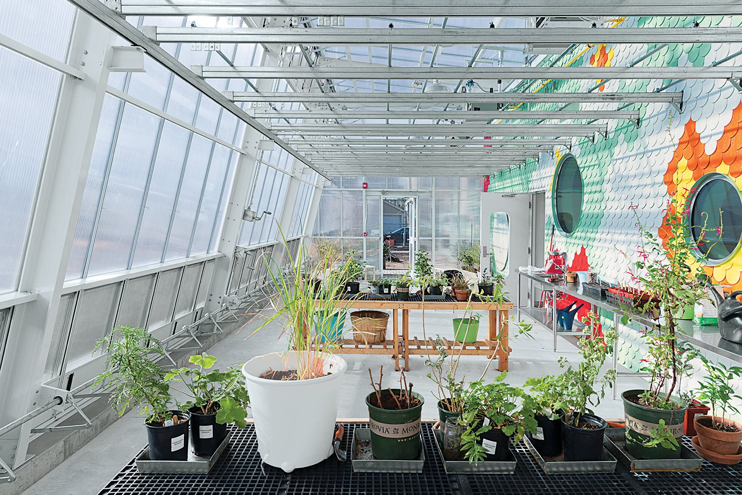 A glass enclosure (left) slides off the main structure in warmer months to open up the garden—which contains 1,600 square feet of soil—to air and sun.  Photo 1 of 11 in 11 Innovative and Modern Schools Where Creativity and Good Design Rule from An Edible Learning Garden in Brooklyn