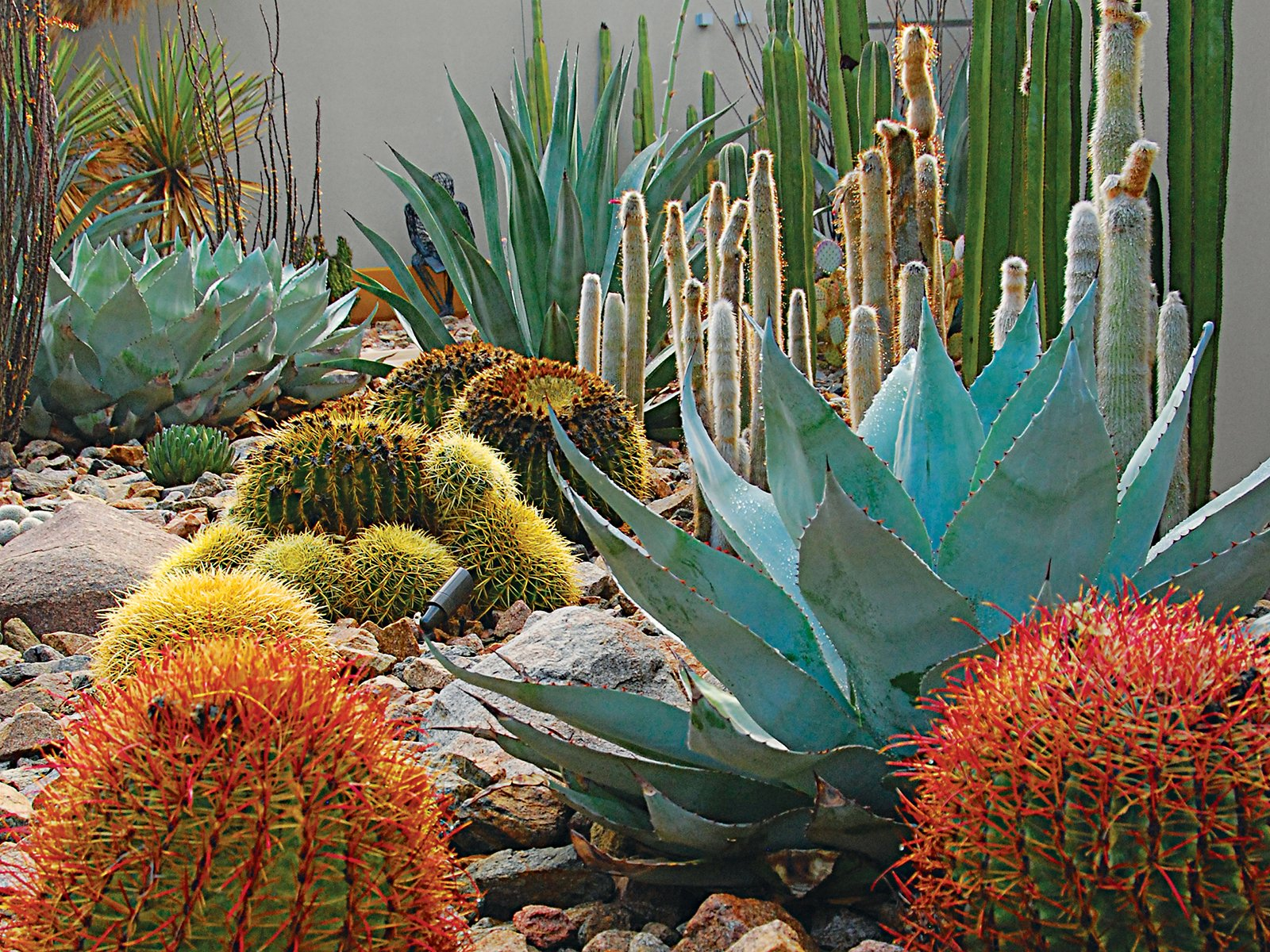 Photo 2 of 12 in landscape design for all climates dwell for Low maintenance desert plants