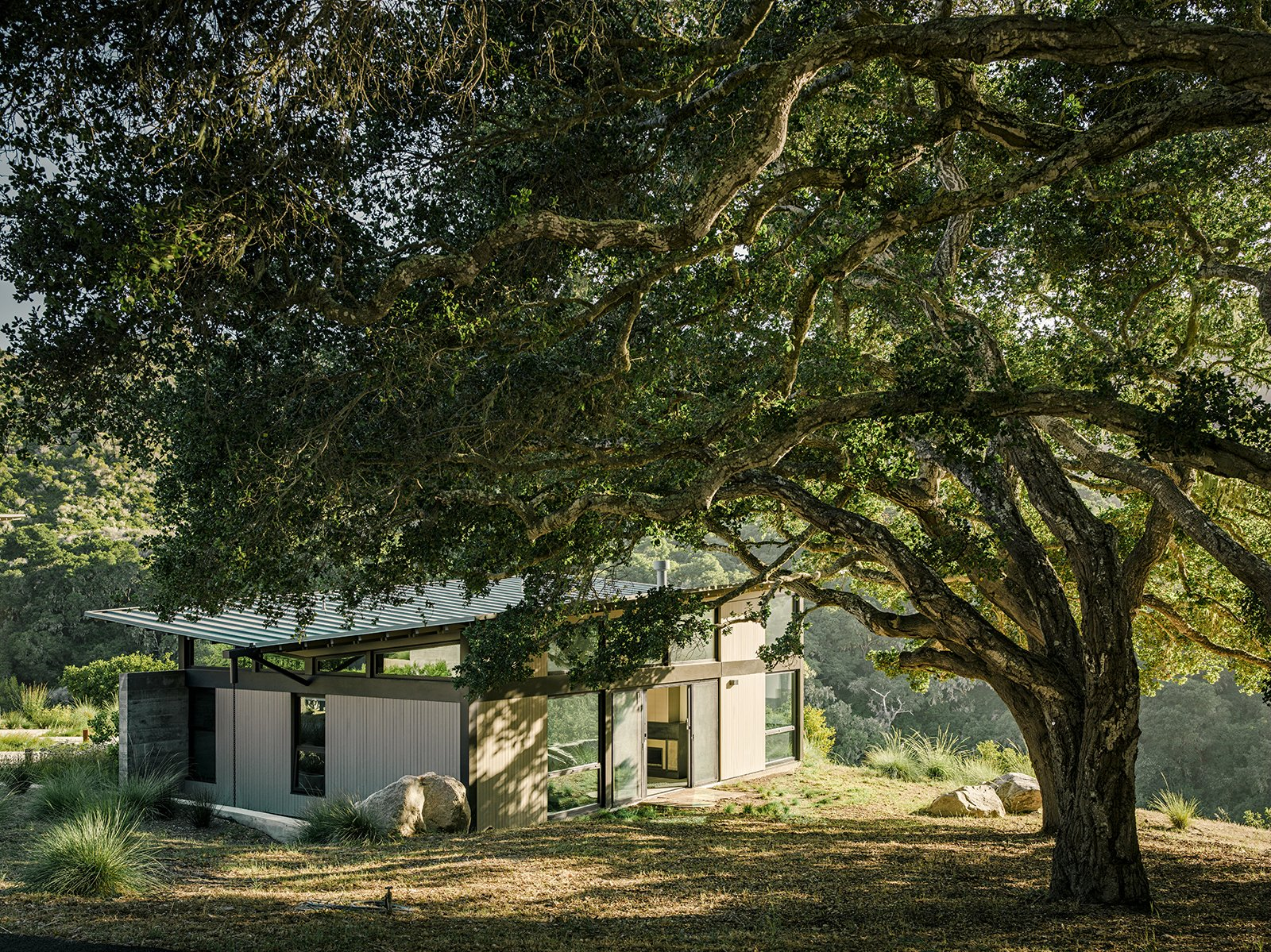 "The bedroom pavilion is mostly hidden, thanks to a massive native California oak—part of a grove. ""That's the good thing about oaks—they keep their leaves in the winter, so you don't have one view in the summer and another in the winter,"" Suzanne says. Tagged: Outdoor, Side Yard, Trees, Shrubs, and Grass.  Photo 16 of 21 in I Love Modern Architecture from Sustainable Retirement Home in Tune with California Landscape"