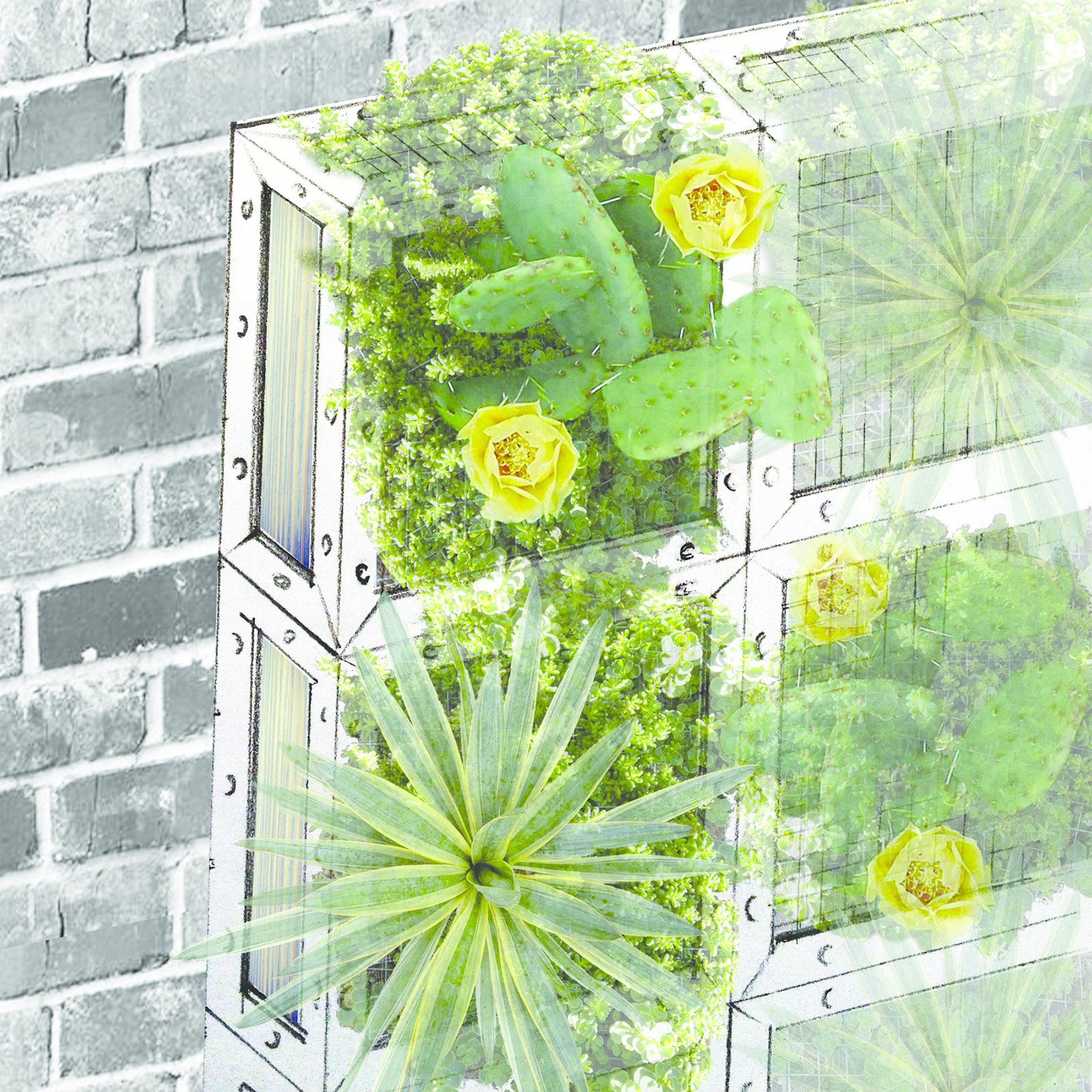 Imagining its allotted ten square feet as vertical space, Greenlab Studio suggests a living wall of succulents and hardy plants growing in a wood, stainless-steel, and wire mesh frame.