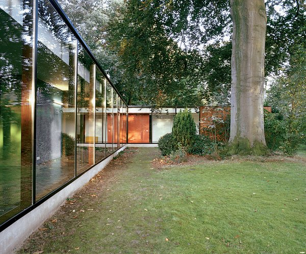 The 300-year-old beech tree supplies shade, movement, sound, and color to the site, and provides a towering natural counterpoint to the renovated home's long, low expanses of glass.