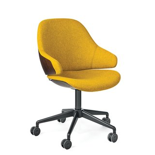 How to Shop for an Ergonomic Task Chair - Photo 3 of 5 -