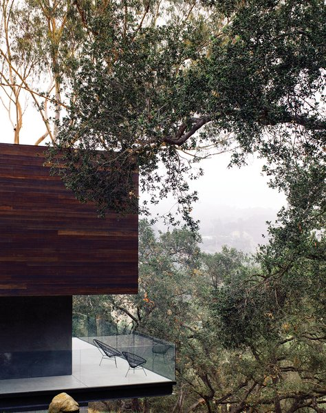"Just as the barn was extended and cantilevered over the sloped site, so too was the deck off the kitchen, which juts out toward the oak grove. ""There are 125 coast live oaks on the property,"" says Walker. ""They're beautiful trees, so why not exploit that?"" See more ways to use oak in your home."