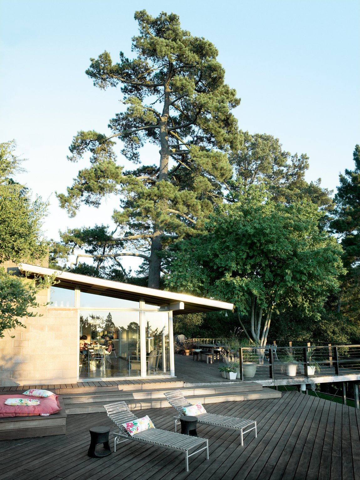 The large deck was falling apart when the Pfeiffers moved in, necessitating a serious overhaul of the lower level. Tagged: Exterior, House, and Mid-Century Building Type.  Photo 8 of 9 in Oakland Aesthetics