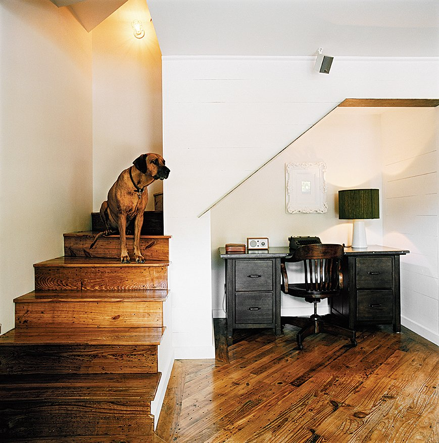 From the stairs West looks across the living room over the salvaged pine floors, which run throughout the house. Dogs Who Love Modern Design by Brian Karo
