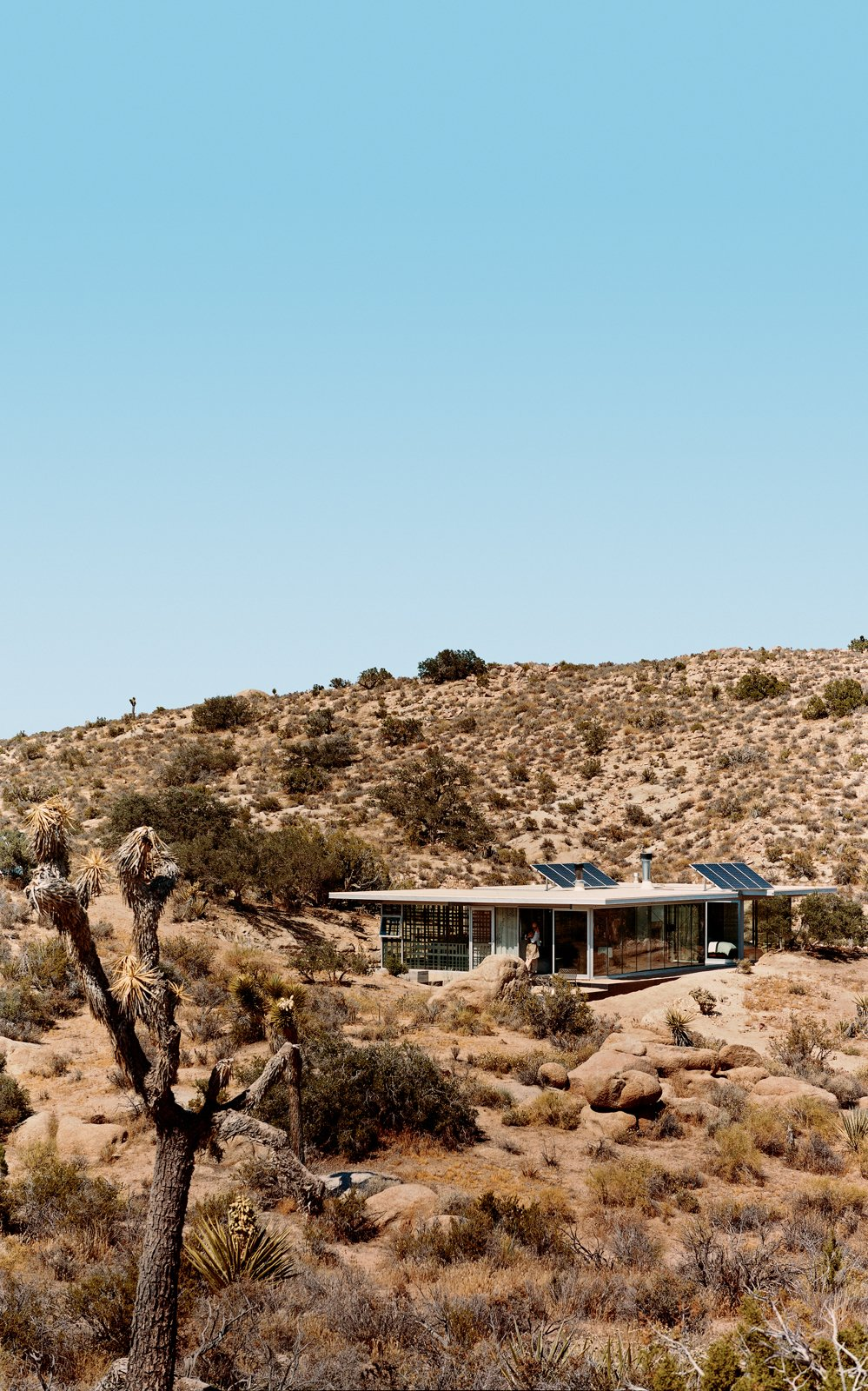 Solar panels catch the sun's energy; wide expanses of open doors and windows provide cross-ventilation; and strategic overhangs shade against the desert's endless heat. Tagged: Exterior, House, and Green Roof Material.  Photo 8 of 10 in 5 Hot Tips to Remember When Planning Your Desert Prefab from iT House, Joshua Tree