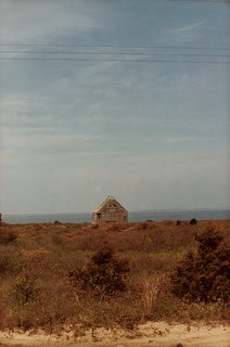 Learnings from Nantucket - Photo 1 of 5 - DW0608_ESSAY_04