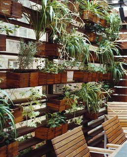 Outdoor Living in NYC - Photo 9 of 11 - Boxes of herbs and spider plants line one side of the patio.
