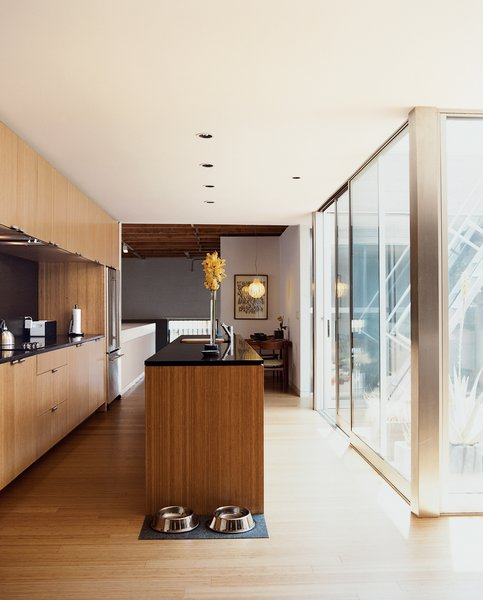 "The kitchen, with Richlite counters and upper cabinets that reach to the ceiling, leads to a small dining area illuminated by a Plexiglas ""Agave"" lamp."