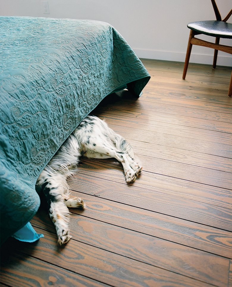 Angus, the family's Llewellyn Setter, sleeps in the master bedroom.