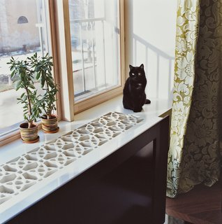 45 Pets in Beautiful Modern Homes - Photo 10 of 45 - Moby the cat sits on the windowsill, which the architect constructed by cutting a geometric pattern into a thick sheet of MDF, a fiberboard product that's inexpensive, easy to machine, and unrecognizable when coated in white lacquer paint.