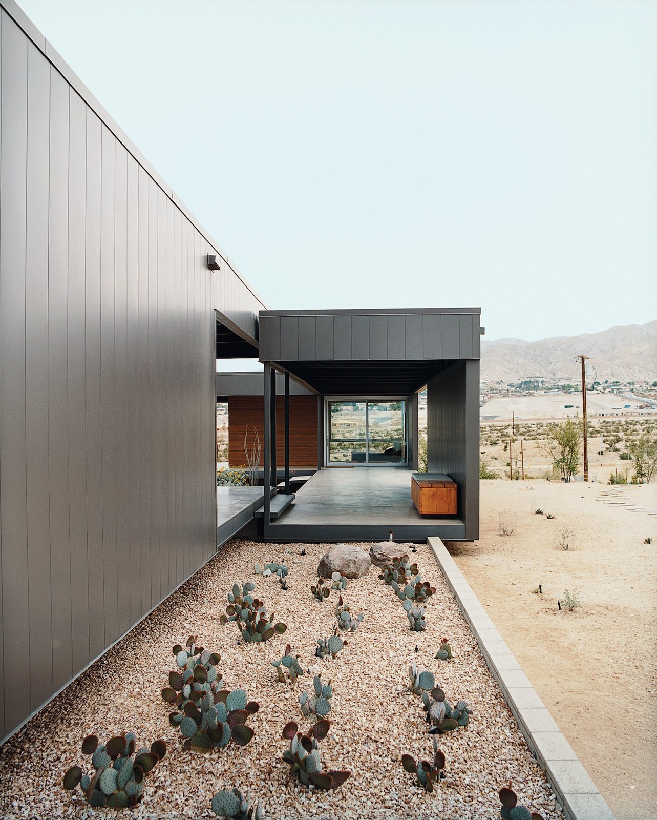 Ocotillo was placed in key areas as a great structural focal point. Desert Utopia - Photo 5 of 9