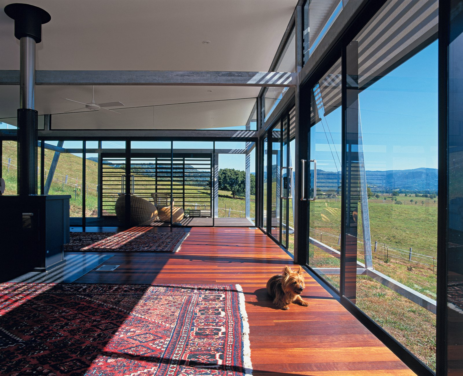 The home's stretched veranda form is a model of economic and democratic design of extruded and repeated elements. It's no accident that this generates major cost savings, thermal efficiencies, and is generous in shared amenities for all residents. The terrier, however, is mostly interested in the view from his eye level.