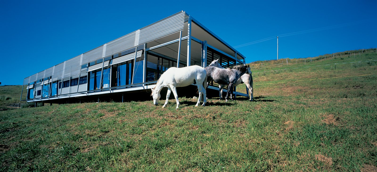 """""""There's a lot of horse talk here, and with this place there is plenty of opportunity for   interaction. My horses can play Mister Ed and join right in,"""" says Kropach. Her inquisitive Andalusian steeds regularly socialize with guests via sliding windows along the house's main north-facing elevation."""