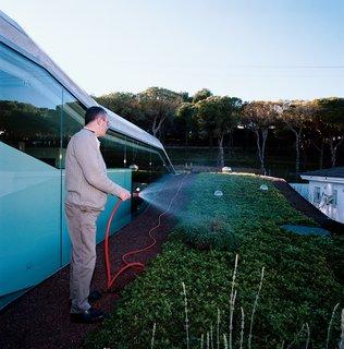 Owner Carles Fontecha waters his rooftop garden.