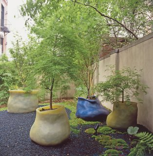 Terra Ephemera - Photo 3 of 6 - A cluster of maple trees sprout from a trio of Autumn Lake eccentric silicone planters and a Ginko medium classic planter in the courtyard of Hayes' gallery, Salon 94.