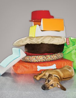 Dog Beds - Photo 1 of 1 -