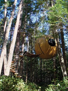"The High Life - Photo 3 of 4 - British Columbia–based Tom Chudleigh designed the Free Spirit Sphere as a have-your-cake-and-eat-it-too tree house that combines the wonder of being airborne with all manner of earthly comforts.<br><br>Handcrafted of wood or fiberglass, this lavish ten-foot-six-inch-diameter sphere is fully wired to accommodate a microwave, space heater, refrigerator, TV, Clapper—whatever. And it's plumbed for a kitchen sink. Retractable beds sleep up to four people. <br><br>But if the point is to surround one's self with all mod cons, why not just rent a condo in Barstow? ""When you're up in the trees,"" Chudleigh says, somewhat evasively, ""you really get the sense that you are just floating up there, that you're in a different world."" This sensation is produced by four flexible ropes that connect to the sides of the sphere, allowing it to suspend freely above the ground and move with the whim of the forest breeze or branches, intimately connecting the Free Spirit Sphere occupant with the surroundings. ""It's a really healing place up here."" <br><br>Chudleigh has built four spheres so far and is on his way to Australia to build four more. Prices range from $45,000 for the fiberglass to $150,000 for the handcrafted wood sphere. ""You think of conventional buildings as having walls, straight lines, color patterns,"" says Chudleigh. ""In these spheres you are completely removed from that: All walls are merged into one, you are in the air, connected to it, detached from everything familiar—it's a total escape from the conventional world.""  br><br><br>br><br><br>Photograph by Gregor MacLean."