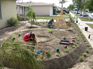 The Lawn Goodbye - Photo 1 of 5 - Artist Fritz Haeg is trying to change the way we look at our lawns and illustrate how we might make better use of them. Michael and Jennifer Foti's once unproductive front yard gets a makeover.