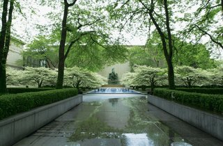The Ungreening of America - Photo 4 of 6 -