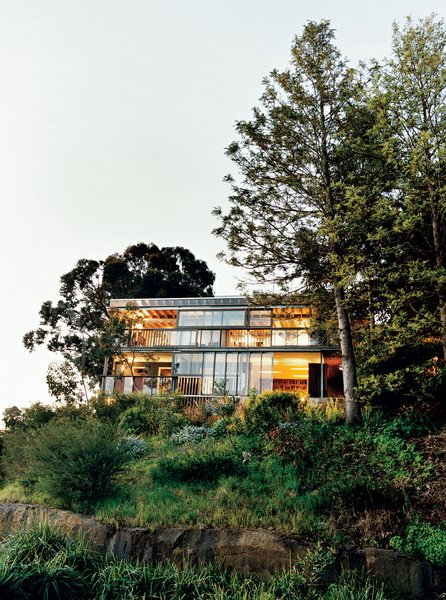 The rear facade. A system of sliding glass windows and doors underscore the indoor/outdoor nature of the house.