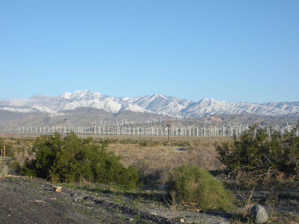 Wind turbines cover the landscape just north of Palm Springs.
