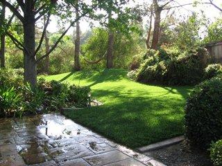 On Greener Turf - Photo 1 of 3 -