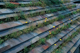 Terunobu Fujimori - Photo 9 of 23 - In the summertime, grass and dandelions blooming add a new hue to the roof of Fujimori's family home.