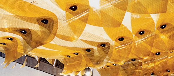 A detail of the installation Maximilian's Schell, which is a vortex-shaped canopy crafted from high-tech sail material.