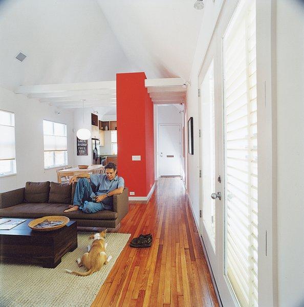Beautiful Small Homes Interiors: 45 Pets In Beautiful Modern Homes