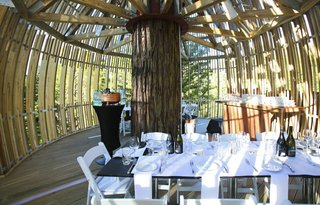 Yellow Treehouse Restaurant - Photo 2 of 5 -